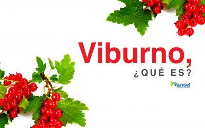 VIBURNO