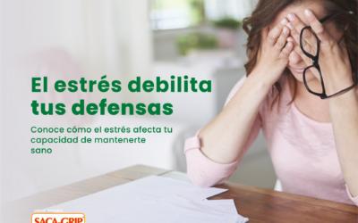 ASÍ ES COMO EL ESTRÉS DEBILITA TUS DEFENSAS
